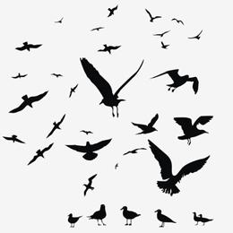 Timbres      du thème Oiseaux   '