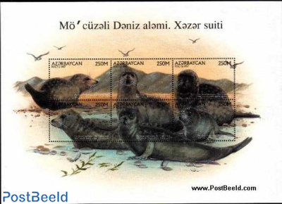Caspic seal 6v m/s