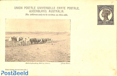 Illustrated postcard 1.5d