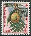 Definitive, fruit 1v