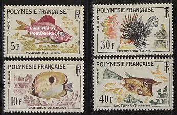 Fish 4v
